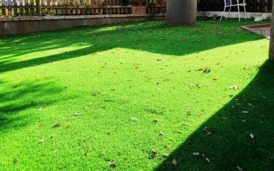 Interior Design Tips with the Best Artificial Grass for Homes in Tampa