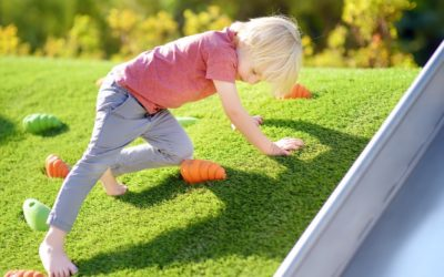 Customize Your Playground with an Installer of Artificial Grass for Homes in Tampa
