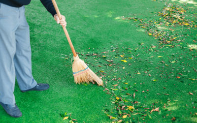 Easy Seasonal Care Tips After You Install Artificial Turf in Tampa, FL