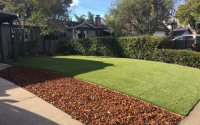 Achieve a Pristine, Pest-Free Lawn with Tampa Synthetic Grass