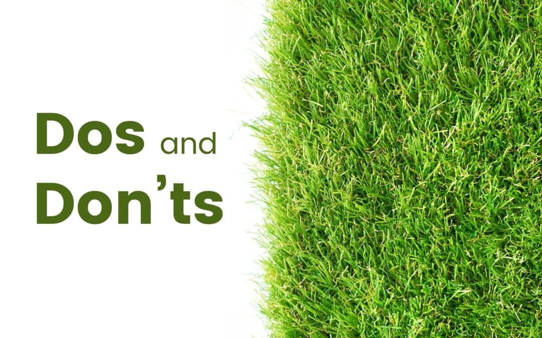 Essential Dos and Don'ts When Landscaping Tampa Synthetic Grass in Backyards